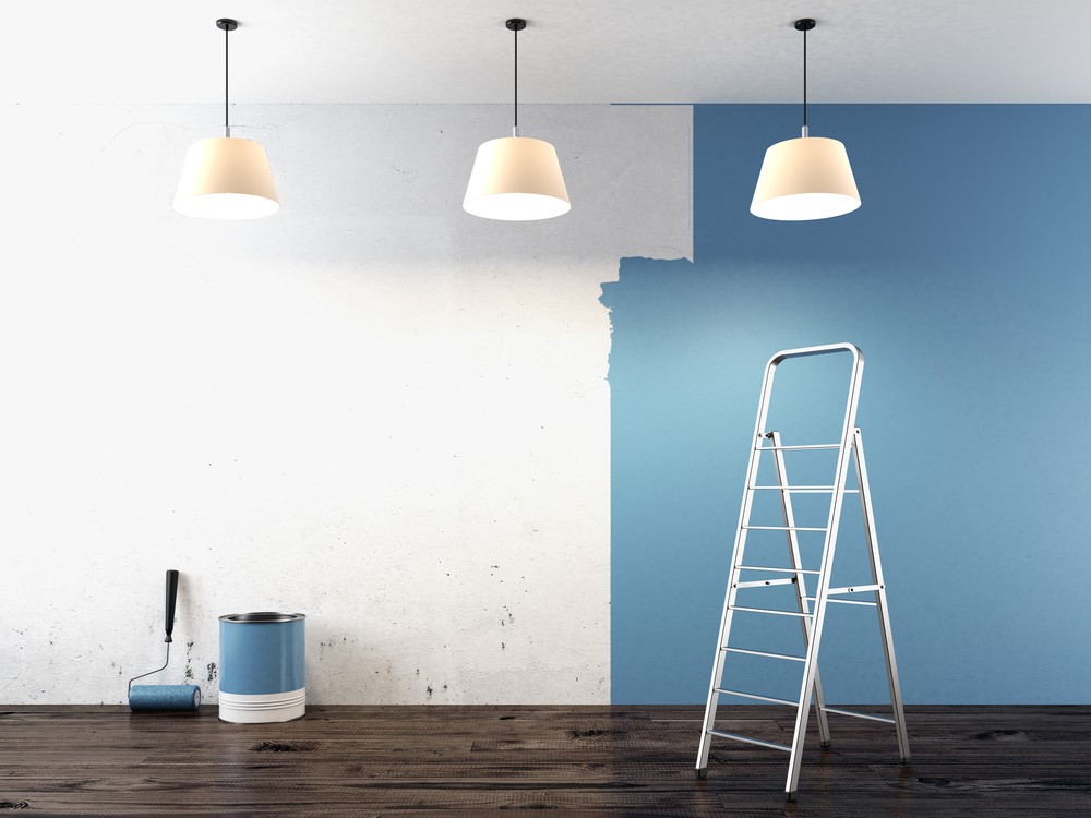 Image result for Multiple Coats of Matte Paint on wall